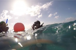 Preparing for a Dive Trip